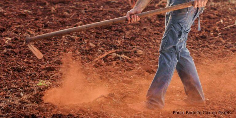 Labranza en profundidad y mejora del carbono en los suelos