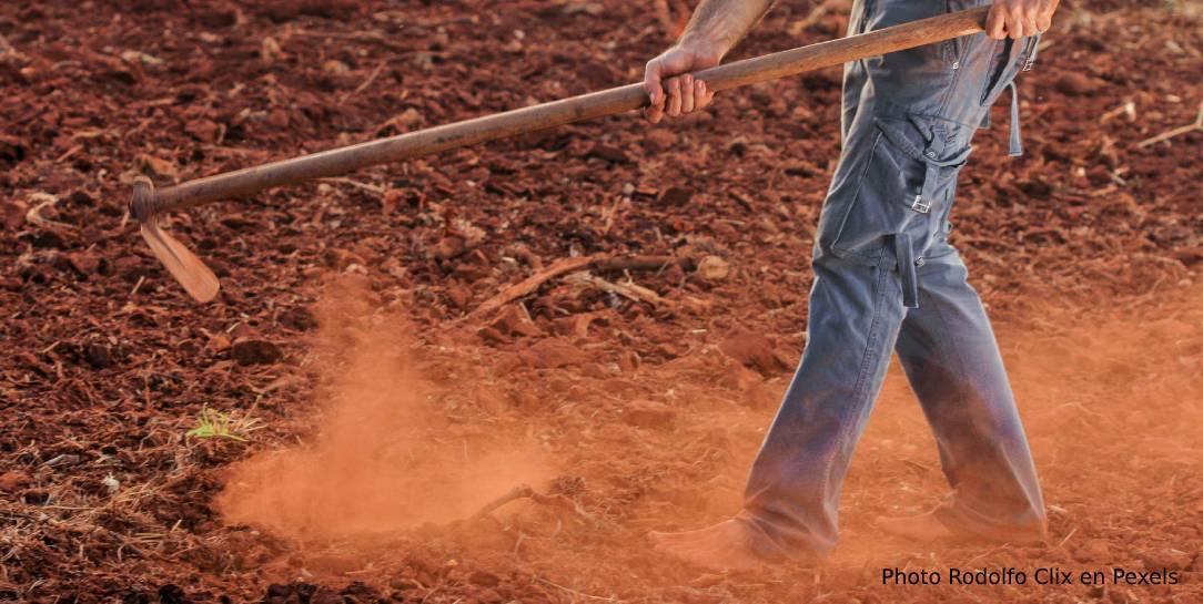 labranza profunda del suelo puede ser una herramienta prometedora para compensar las emisiones de gases de efecto invernadero