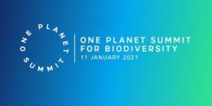 One Plannet Summit