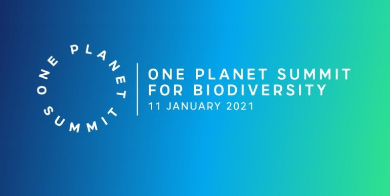 One Plannet Summit