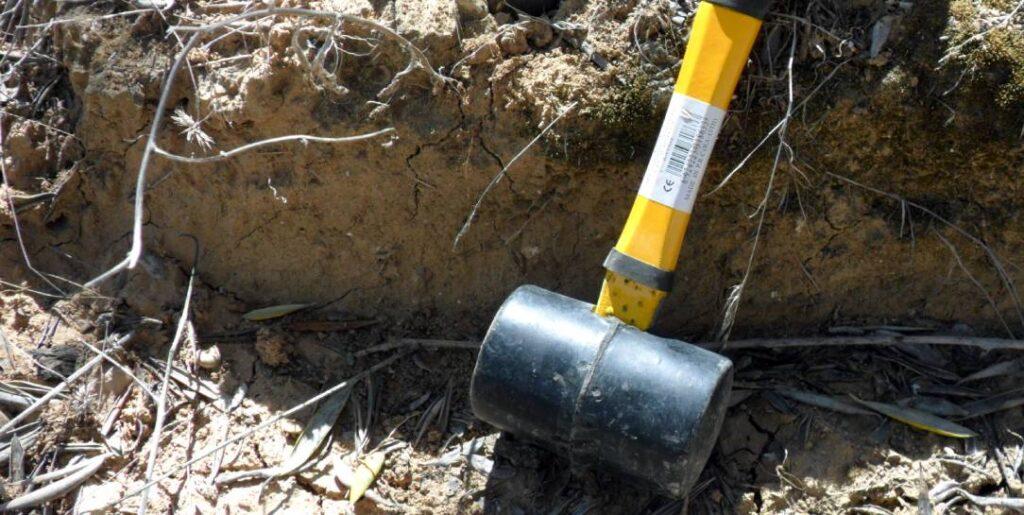 Naturaleza y propiedades de los suelos. Edición 15