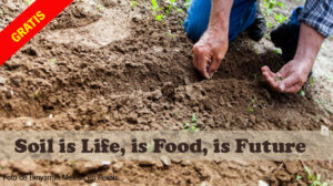 Soil is Life, is Food, is Future