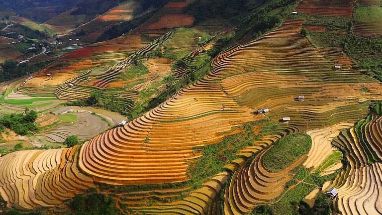 El impacto del uso de la tierra y los patrones de lluvia en la erosión en laderas
